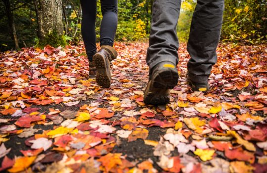 image of 10 ways to save money this autumn